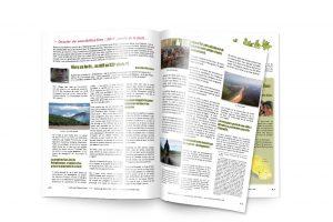 Bulletin d'information tourisme équitable
