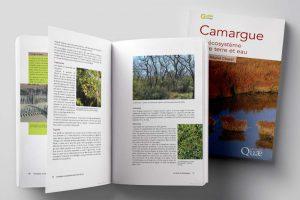 Édition guide naturaliste Camargue pour Quae