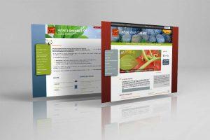 Plate-forme web Réseau école et nature