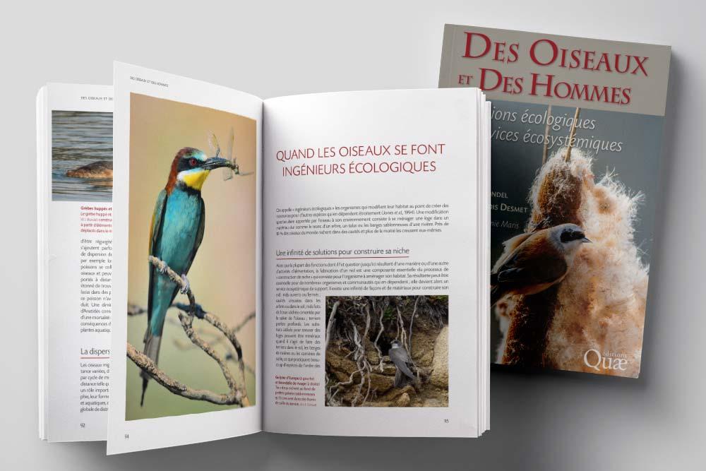 Édition de l'ouvrage Des oiseaux et des hommes pour les éditions Quae